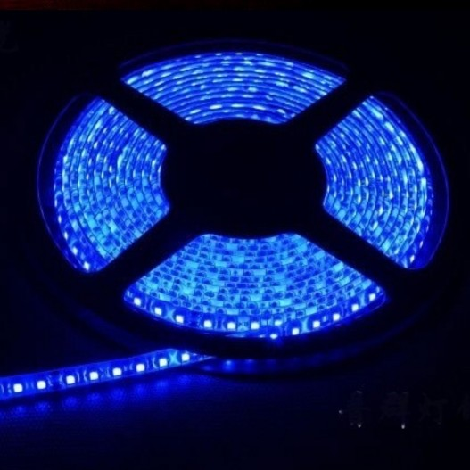 Waterproof 3528 Blue Flexible Strip Light 5M 600LEDs 12V LED Tape 2pcs