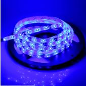 Waterproof 3528 Blue Strip Light 5M 300LEDs 12V Flexible LED Tape