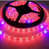 12V 5M Plant Growing 5050 Strip LED Flex Light Hydroponic Red Blue 8:1